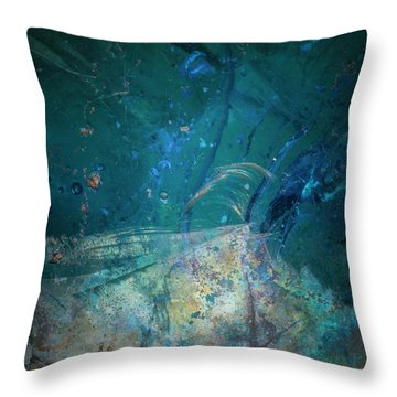 Throw Pillow featuring the photograph Earth Portrait 001-88 by David Waldrop