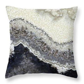 Earth Portrait 002 Throw Pillow