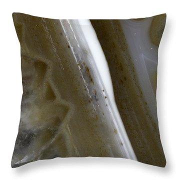 Earth Portrait 005 Throw Pillow