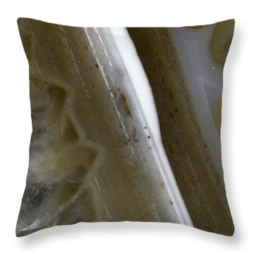 Earth Portrait 005 Throw Pillow