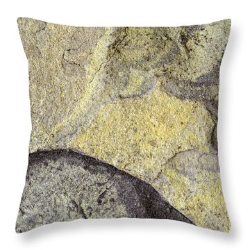 Earth Portrait 010 Throw Pillow