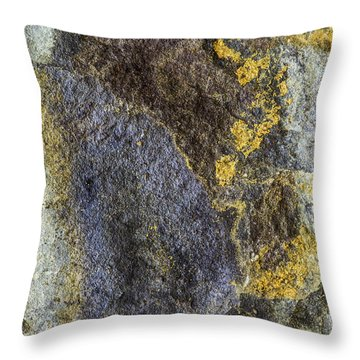 Earth Portrait 012 Throw Pillow