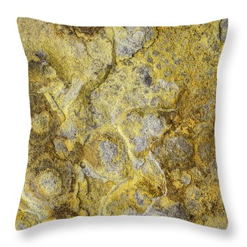 Earth Portrait 013 Throw Pillow
