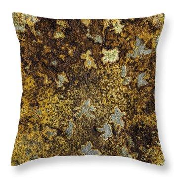 Earth Portrait 015 Throw Pillow