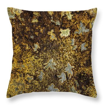 Earth Portrait 015 Throw Pillow