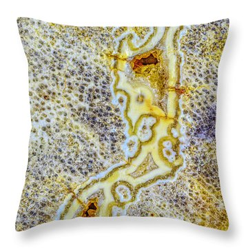 Earth Portrait 276 Throw Pillow