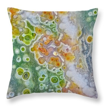 Earth Portrait 277 Throw Pillow