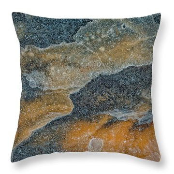 Earth Portrait 283 Throw Pillow