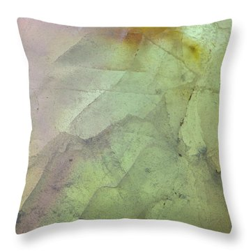 Earth Portrait 284 Throw Pillow