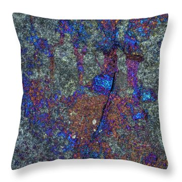 Earth Portrait 288 Throw Pillow