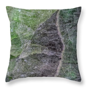 Earth Portrait 294 Throw Pillow