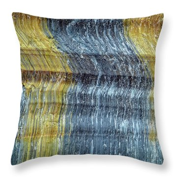 Earth Portrait 295 Throw Pillow