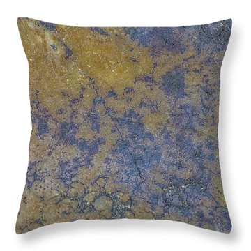Earth Portrait L 2 Throw Pillow