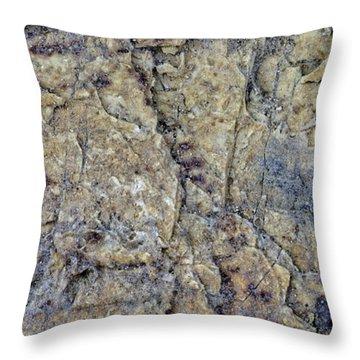 Earth Portrait L1 Throw Pillow