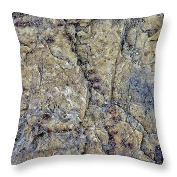 Earth Portrait L1 Throw Pillow