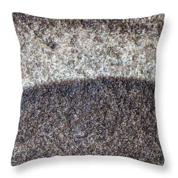 Earth Portrait L10 Throw Pillow