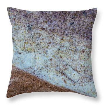 Earth Portrait L3 Throw Pillow