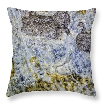 Earth Portrait L4 Throw Pillow
