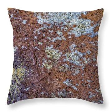 Earth Portrait L6 Throw Pillow