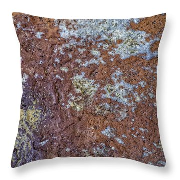 Earth Portrait L6 Throw Pillow