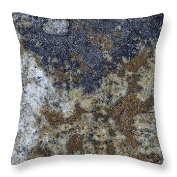 Earth Portrait L8 Throw Pillow