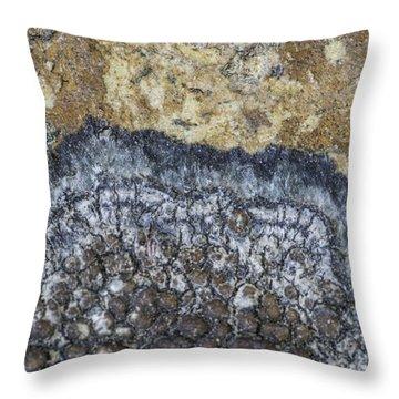 Earth Portrait L9 Throw Pillow