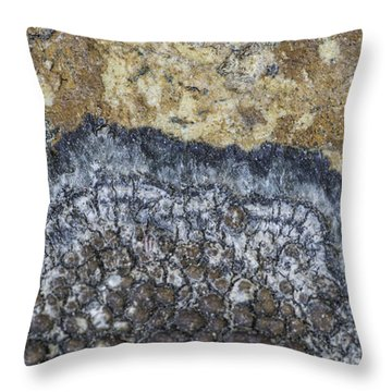 Earth Portrait L9 Throw Pillow