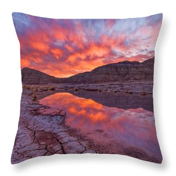 Earth Scales Throw Pillow