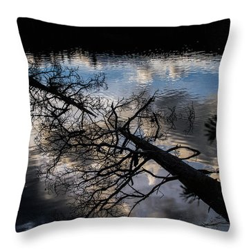 Earth To Water Throw Pillow by Alana Thrower
