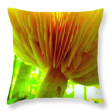 Earth View Throw Pillow by Shirley Sirois