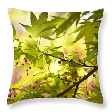 Earth Walk Throw Pillow