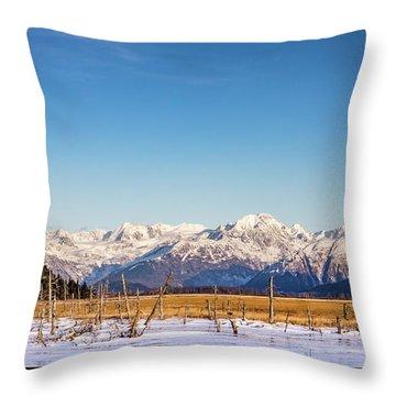 Earthquake Remains Throw Pillow