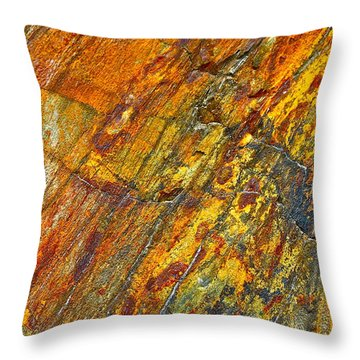 Earths Palette Throw Pillow by Karon Melillo DeVega