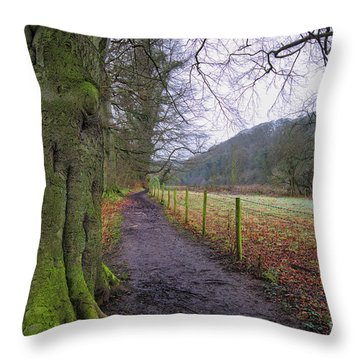 Easby Walks Throw Pillow