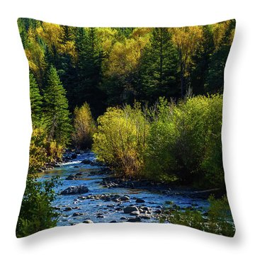 East Fork Autumn Throw Pillow