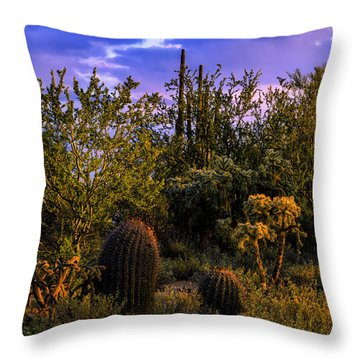 East Of Sunset V40 Throw Pillow by Mark Myhaver