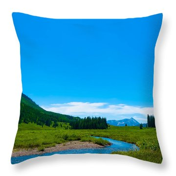 East River On Gothic Road Throw Pillow