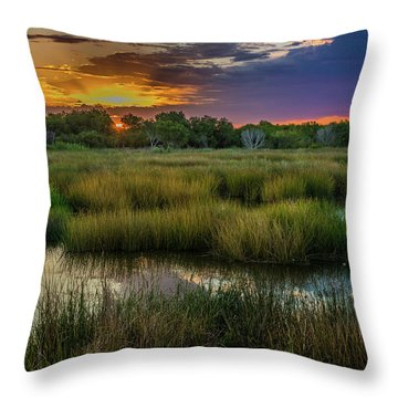 East Wetlands Sunrise Throw Pillow
