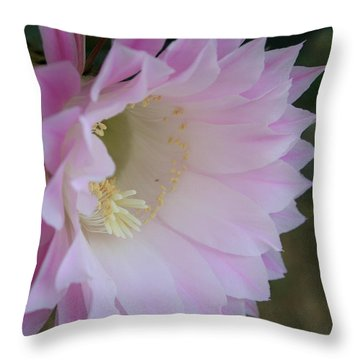 Easter Lily Cactus East Throw Pillow