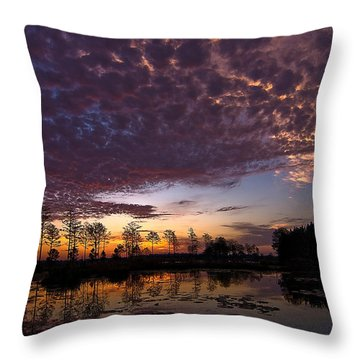 Easter Sonrise Throw Pillow by Dan Wells