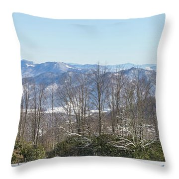Easterly Winter View Throw Pillow