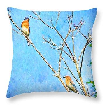 Eastern Bluebird Couple Throw Pillow