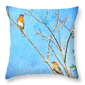 Eastern Bluebird Couple Throw Pillow