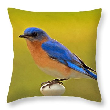 Eastern Bluebird Throw Pillow by Marion Johnson