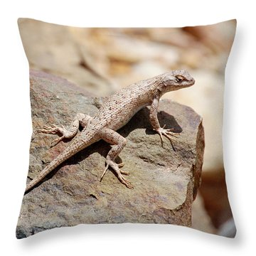 Eastern Fence Lizard, Sceloporus Undulatus Throw Pillow