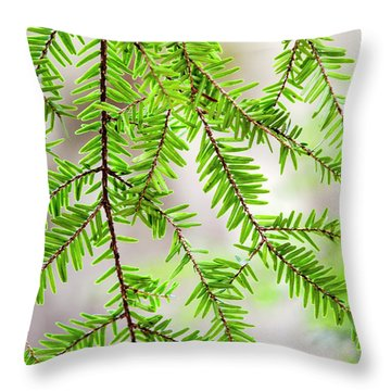 Eastern Hemlock Tree Abstract Throw Pillow by Christina Rollo