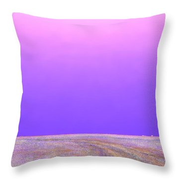 Eastern Horizon Throw Pillow