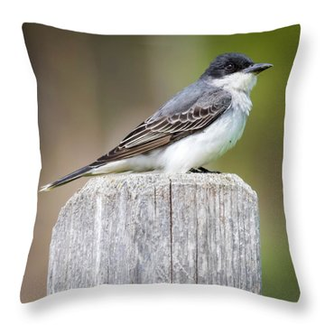 Throw Pillow featuring the photograph Eastern Kingbird 2018 by Ricky L Jones