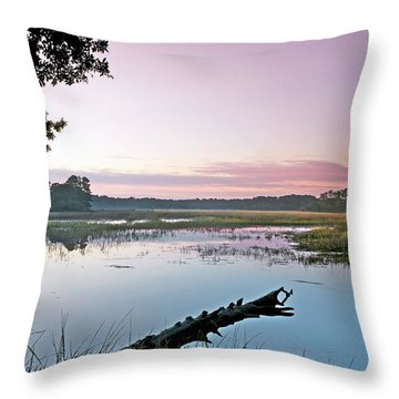 Eastern Morning Throw Pillow by Phill Doherty