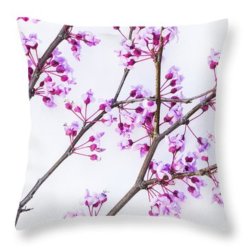 Throw Pillow featuring the photograph Eastern Redbud by Elena Nosyreva